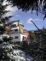 Villa Runolist - apartmani na Kopaoniku